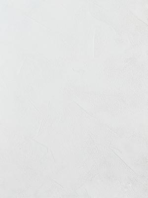 MKS-S003白玉珍珠(白珍珠)