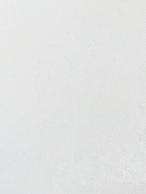 MKS-P003千金之裘(白狐皮)